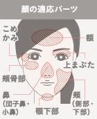BNLS注射 顔の適応部位